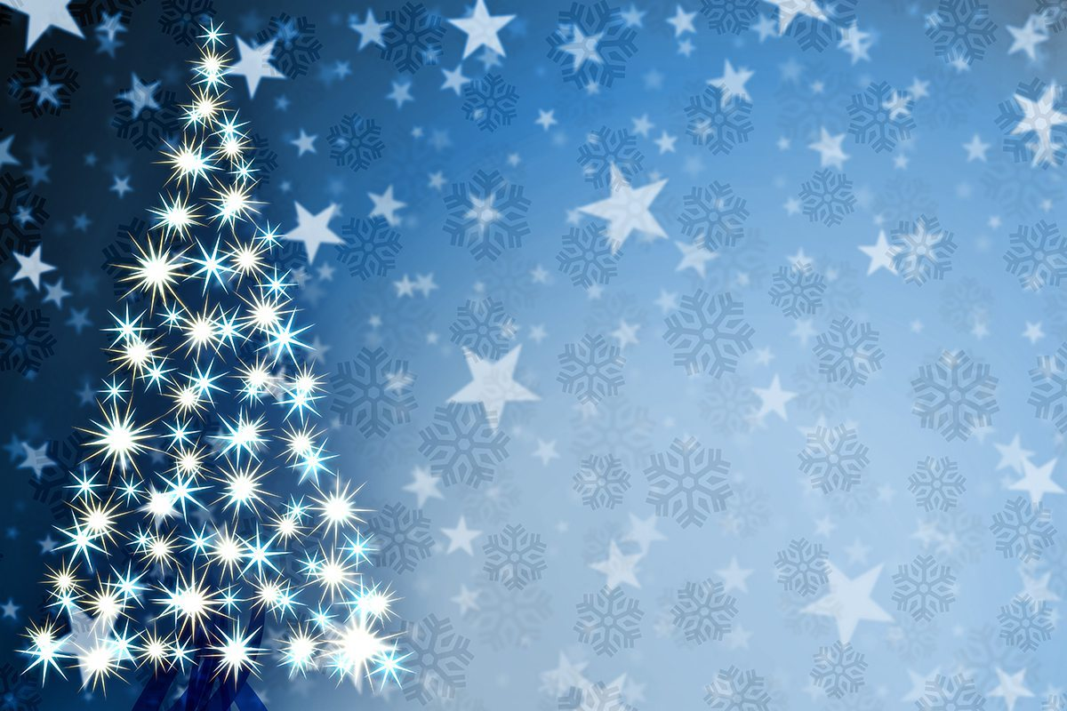 Faay Kerstboom